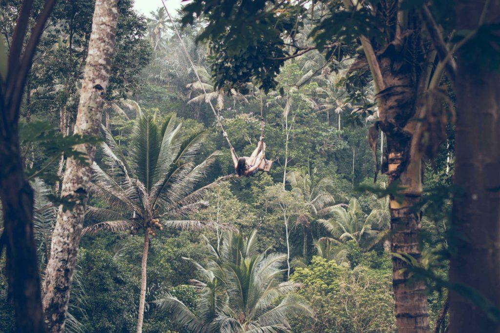 Schaukel im balinesischen Dschungel